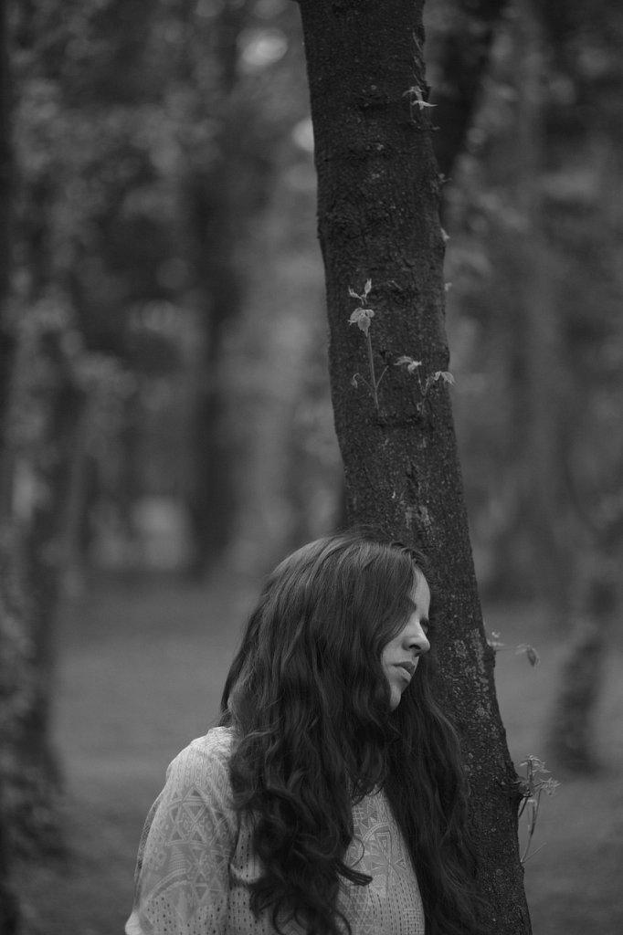 Escuchando a los árboles